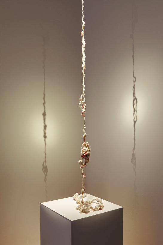 "Work: Series ""Piel"" by Maria Ignacia Walker"